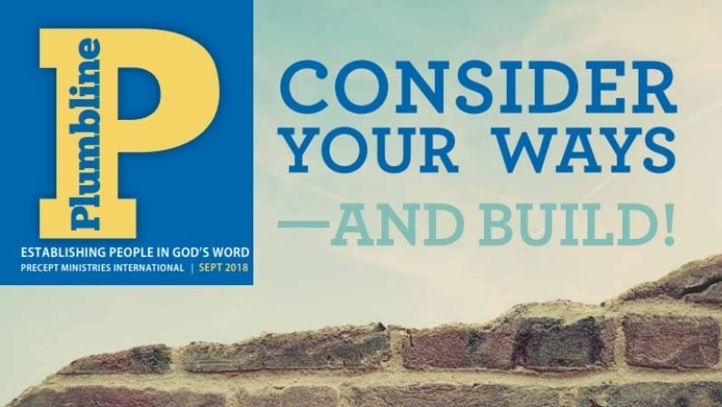 Consider Your Ways—And Build!